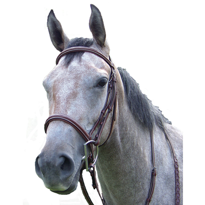 ProAm Padded Raised Fancy Stitched Bridle