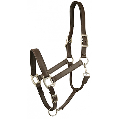 GATSBY ADJUSTABLE PADDED LEATHER HALTER – 5-477148