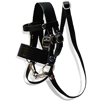 Crafty Ponies Bridle w/Reins and Snaffle Bit
