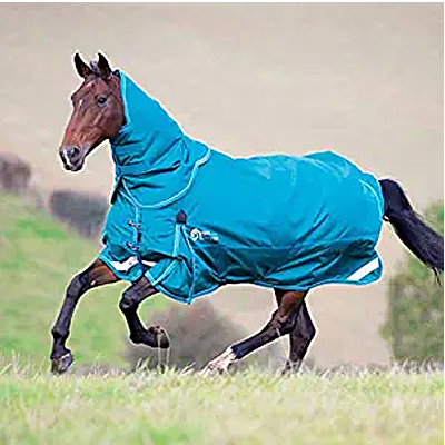 Shires Stormcheeta 200 Blanket & Neck