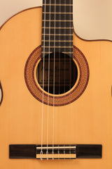 Guitars: Electro-Acoustic