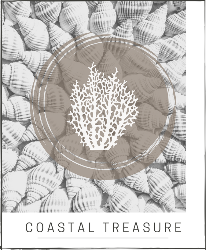 Coastal Treasure Collection
