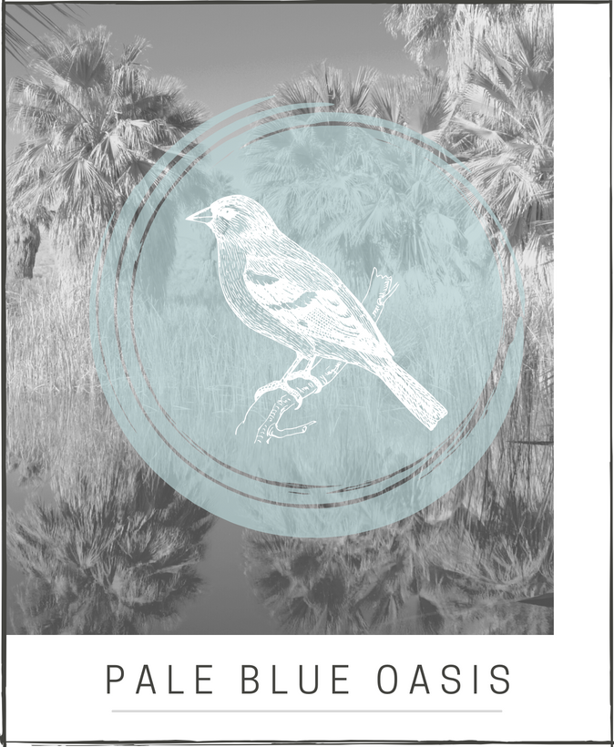 Pale Blue Oasis Collection