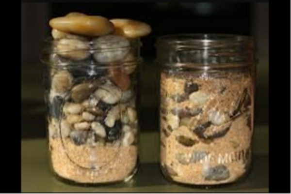 rocks inside jars