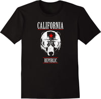 California Republic Big Bear Pilot