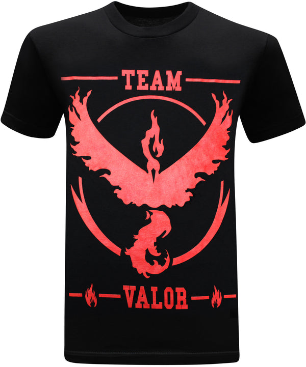 Pokemon Go Team Valor Rules