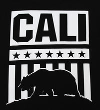 California Republic Cali Presidential Men's T-Shirt - tees geek
