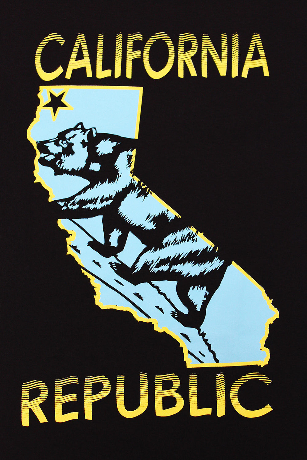 California Republic State Bear Turquoise