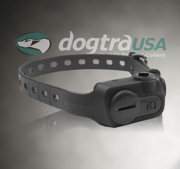 Dogtra iQ No Bark Collar - Northwest Hunting Dogs Supply