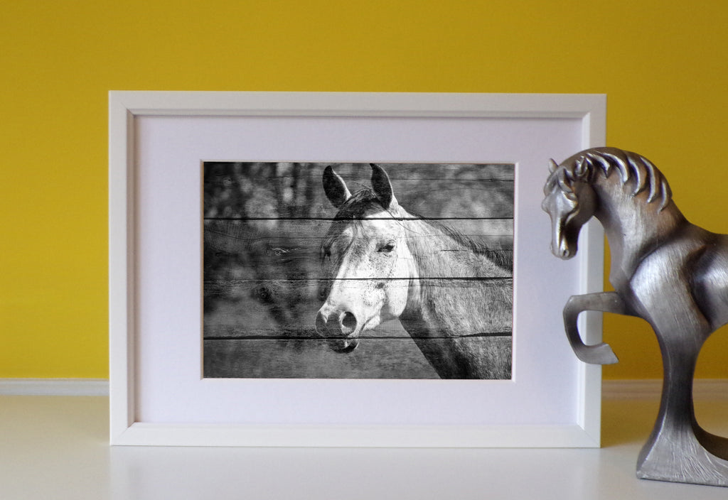 Grey scale wood effect Horse Framed Print