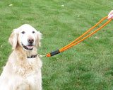 Mad Dog Heeling Leash