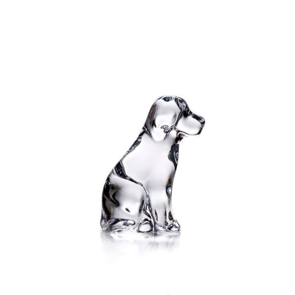 Glass Dog in Gift Box