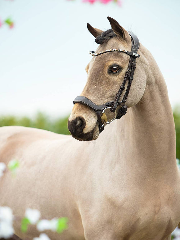 PS of Sweden Sleek Browband Fudge