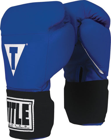 Title Masters Boxing Competition Gloves - Main