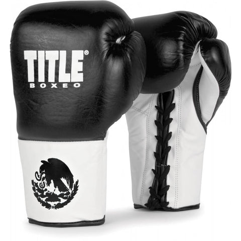 Title Boxeo Pro Sparring Gloves - Main