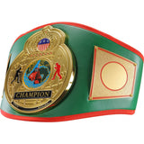 Championship World Title Belt - Angle 2