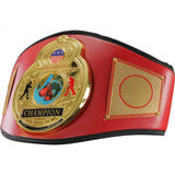 Championship World Title Belt - Angle 4