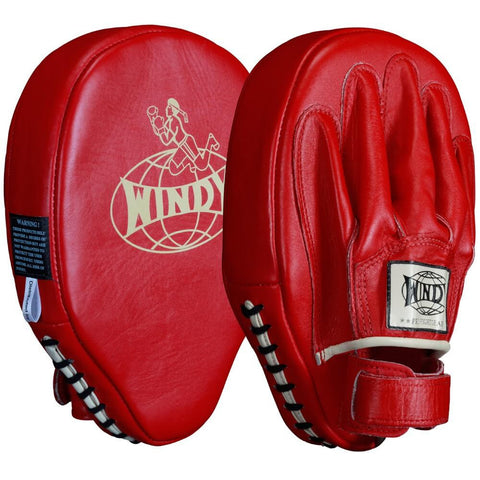Windy Traditional Focus Mitts - Main
