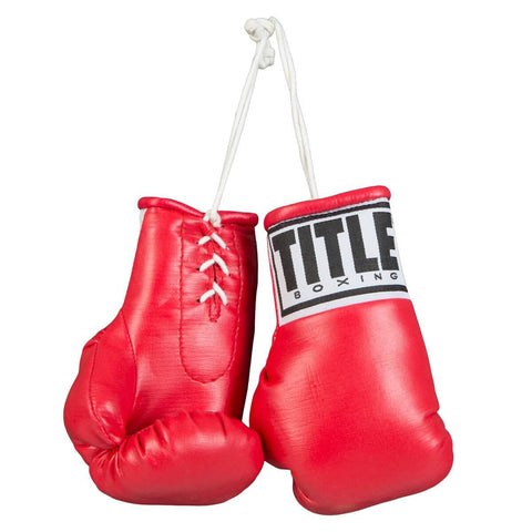 "Title 5"" Mini Boxing Gloves - Main"