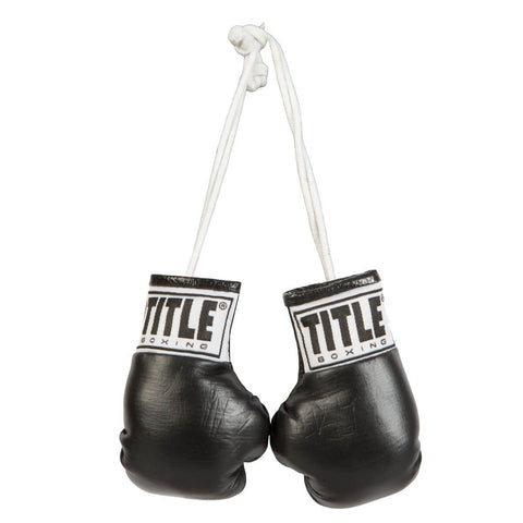 Title Mini Boxing Gloves - Main