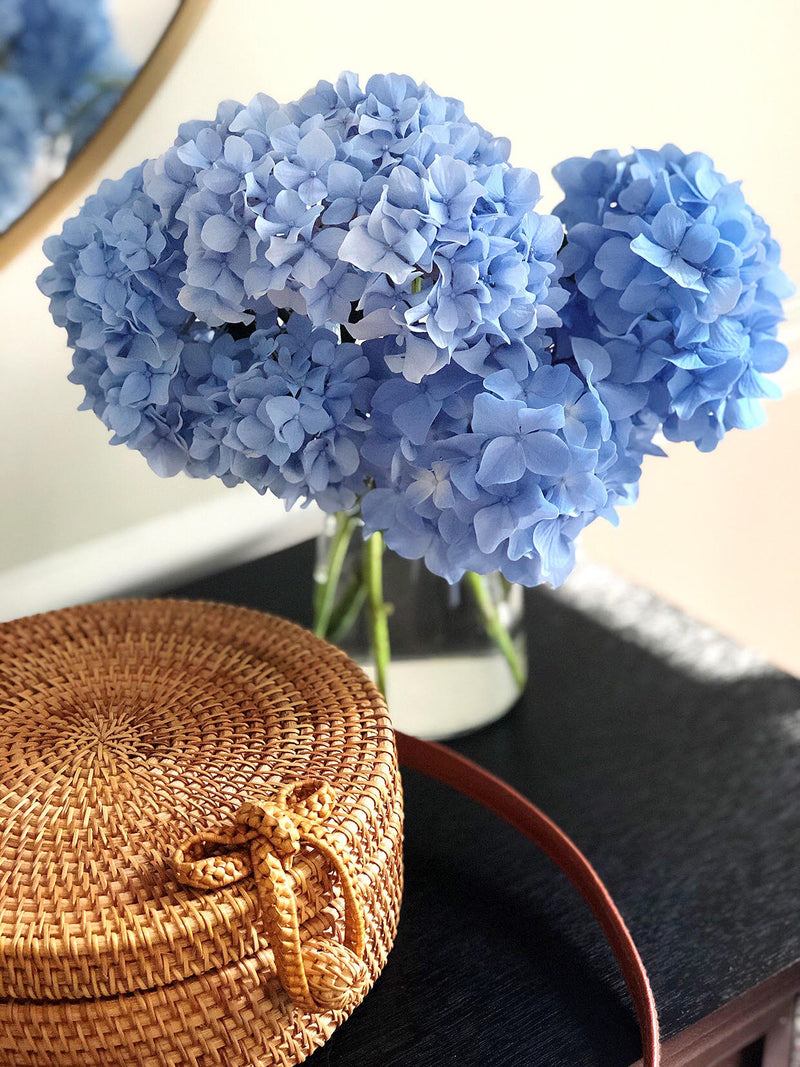 Weekly Joys Blog Post- Blue Hydrangeas