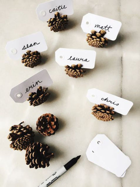 Pinecone place card setting idea