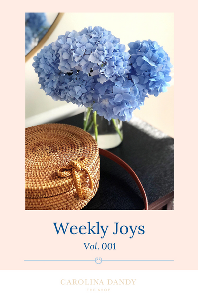Weekly Joys Blog Post