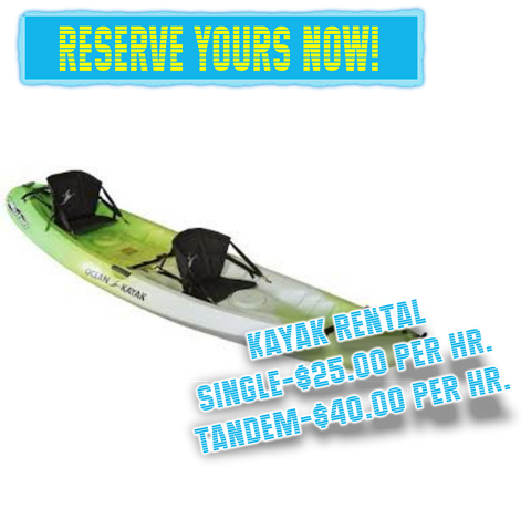 Book Kayak Now