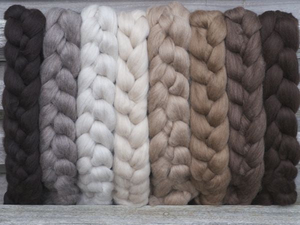 Haunui NZ Halfbred spinning fibre/fiber100g - Fawn/Light Moorit