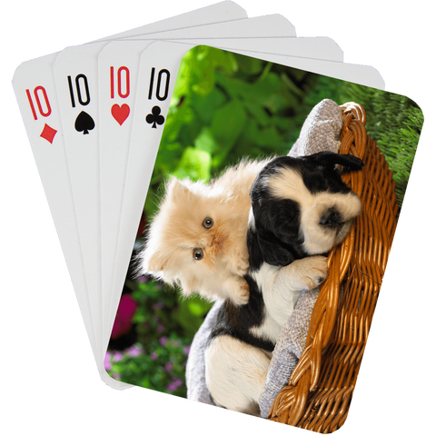 Stock Playing Card Deck - Cute5 - PlayingCardsNow.com