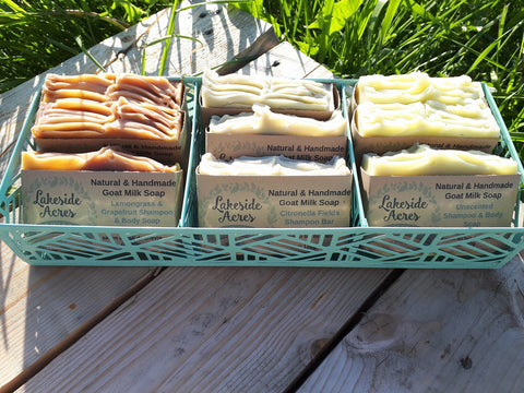 Head To Toe Shampoo Bars- Citronella Fields, Scent Free, Lemongrass Grapefruit, Lavender & Tea Tree
