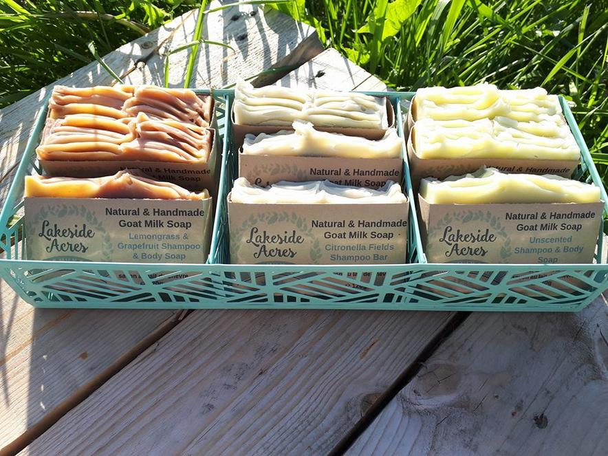 Try our Shampoo Bars