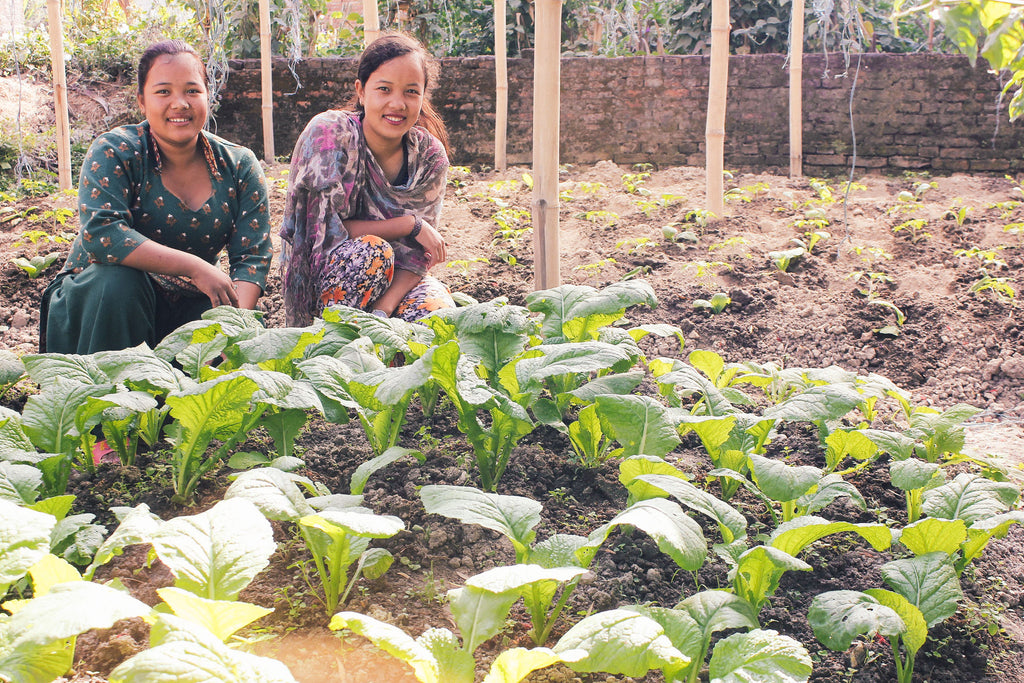 Nepal: 3 women graduate from 'She Has Hope' trafficking rehabilitation home to start small businesses; garden project flourishes