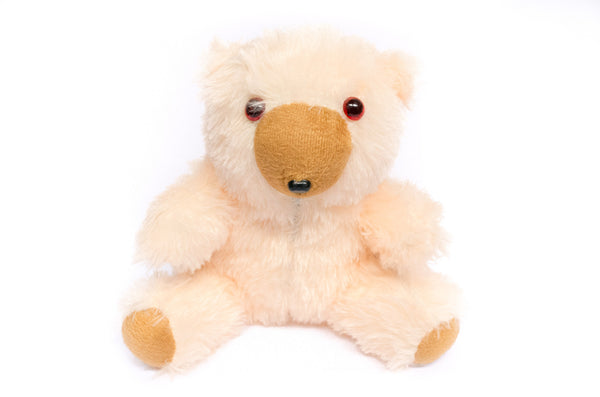 Plush Teddy Bear Toy