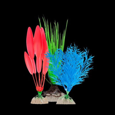 GloFish® Multipack Plants