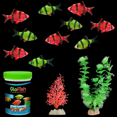 GloFish®  Ultimate Assorted Barb Collection