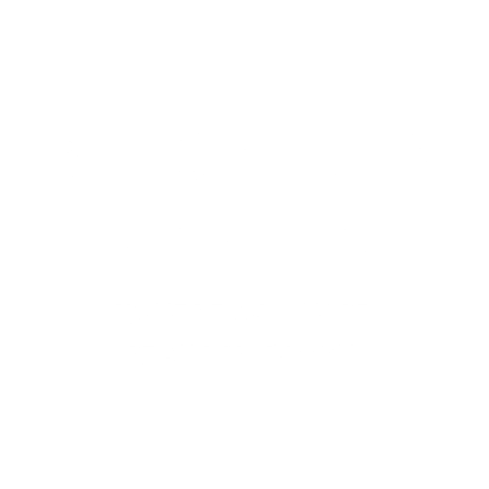 regan's brain