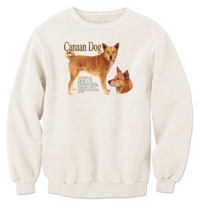 Natural Canaan Dog Sweatshirt