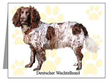 Deutscher Wachtelhund Note Cards