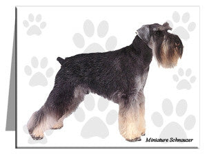 Miniature Schnauzer Note Cards
