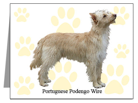 Portuguese Podengo Wire Note Cards