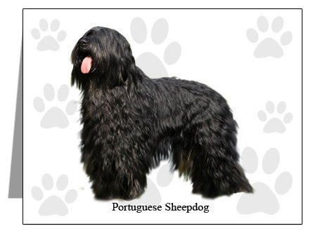 Portuguese Sheepdog Note Cards