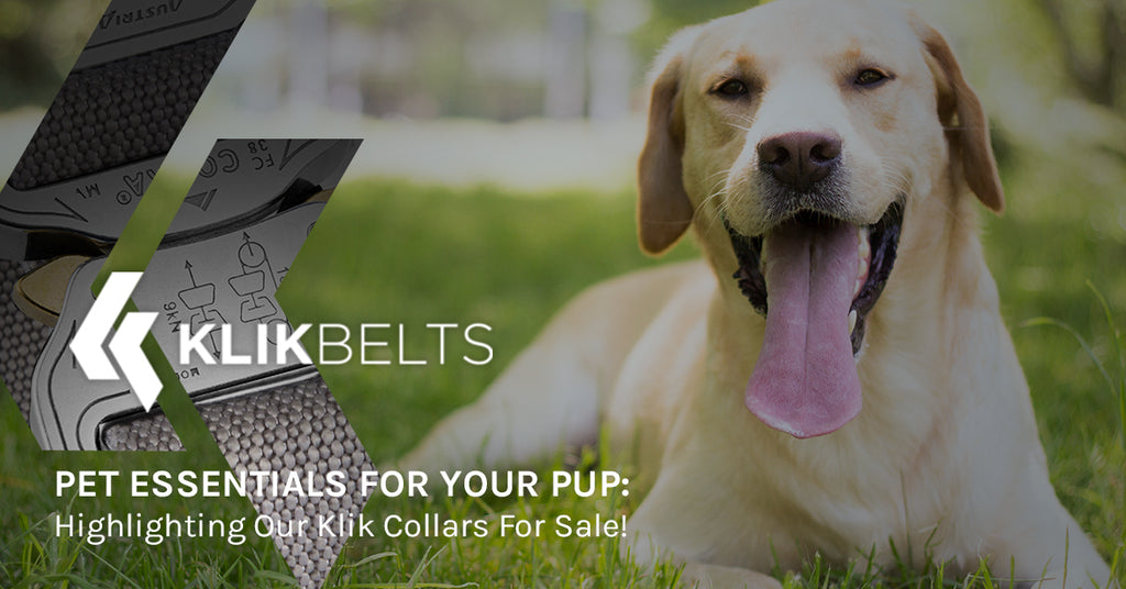 Pet Essentials For Your Pup: Highlighting Our Klik Collars For Sale!