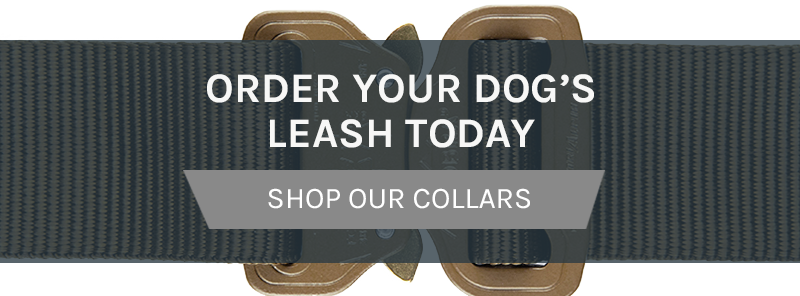 Order Your Dog's Leash Today