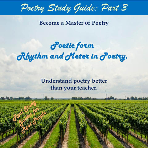 Elements of Poetry Study Guide: Part 3