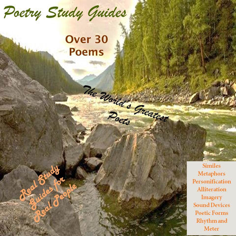 Elements of Poetry Study Guides