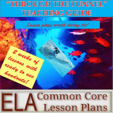 """Through the Tunnel"" Teaching Guide"