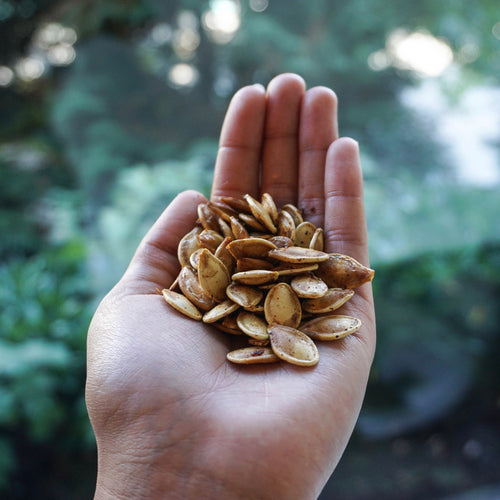 ROASTED PUMPKIN SEEDS ~ TEAM WITHINUS