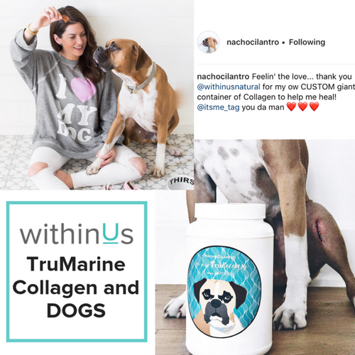 YOUR LOYAL CANINE COMPANION & withinUs TRUMARINE COLLAGEN ~ WITHINUS TEAM