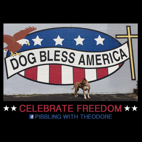 Celebrate Freedom With Theo
